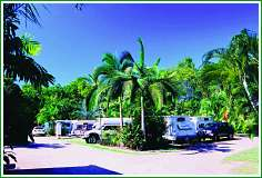 Tropical Hibiscus Caravan Park - Accommodation Burleigh
