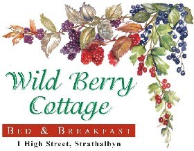 Wild Berry Cottage - Accommodation Burleigh