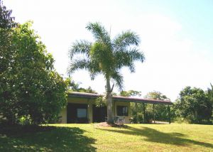 Daintree Mountain View Retreat and Vanilla Beans - Accommodation Burleigh