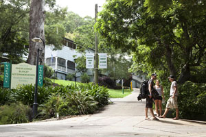 Halse Lodge Backpackers Hostel YHA - Accommodation Burleigh