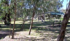 Coach and Horses campground - Accommodation Burleigh