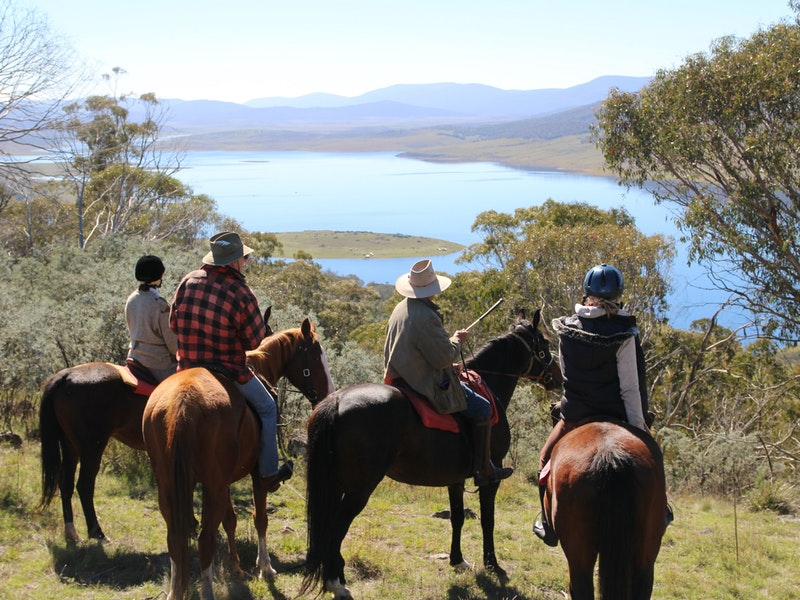 Reynella Homestead and Horseback Rides - Accommodation Burleigh