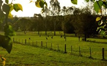 Stone Cottage Mittagong - Accommodation Burleigh
