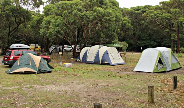 Pretty Beach Campground Murramarang National Park - Accommodation Burleigh