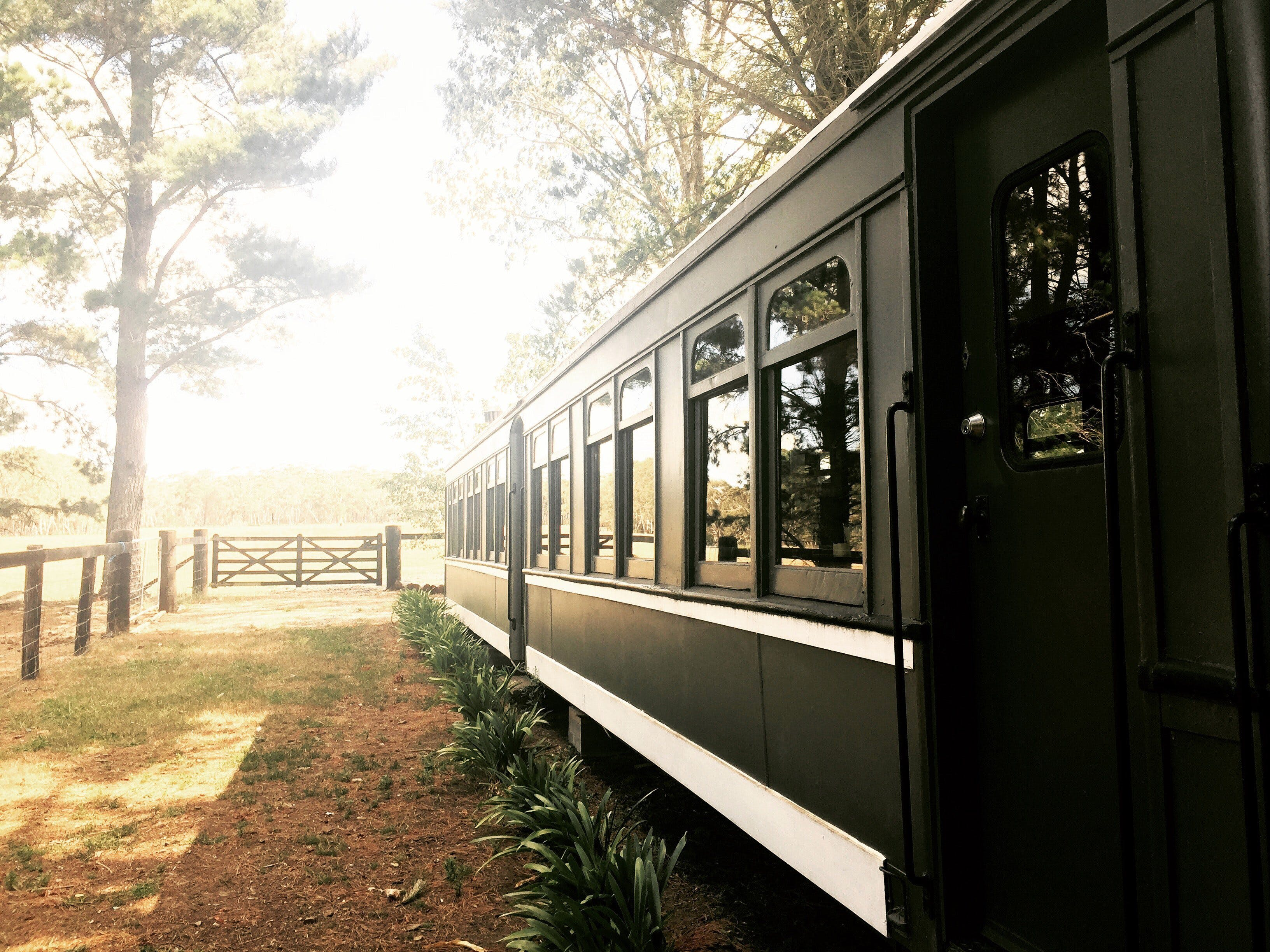 Redleaf Farm Carriages - Accommodation Burleigh