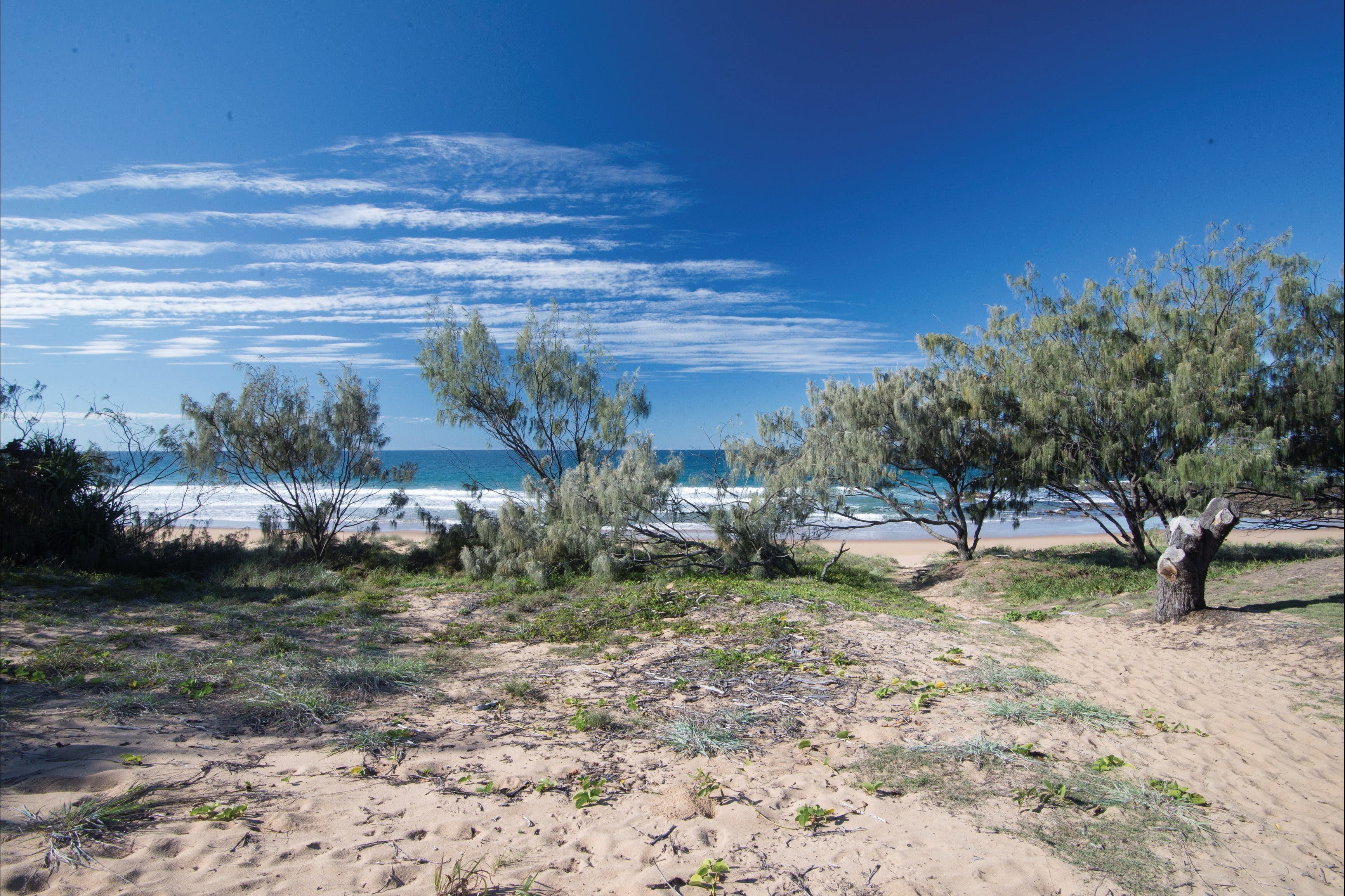 Deepwater National Park camping - Accommodation Burleigh