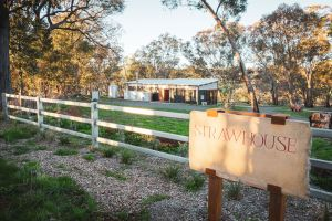 Strawhouse - Accommodation Burleigh