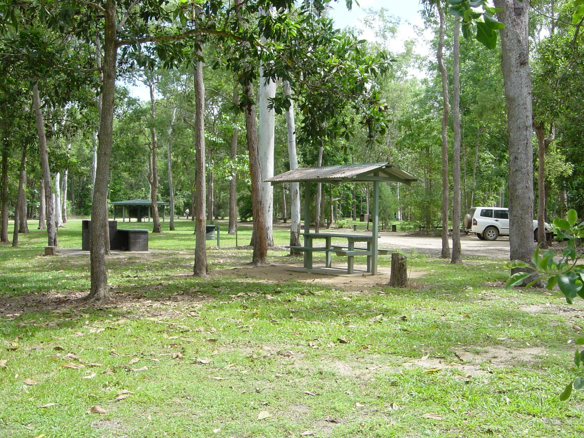 Broadwater camping area Abergowrie State Forest - Accommodation Burleigh