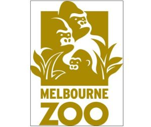 Melbourne Zoo - Accommodation Burleigh