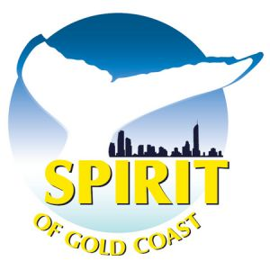 Spirit of Gold Coast Whale Watching - Accommodation Burleigh