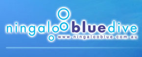 Ningaloo Blue Dive - Accommodation Burleigh