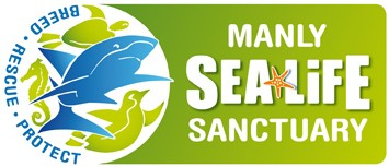 Manly SEA LIFE Sanctuary - Accommodation Burleigh