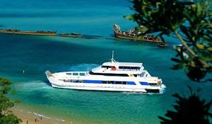 Queensland Day Tours - Accommodation Burleigh
