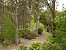 Mount Lofty Botanic Garden - Accommodation Burleigh