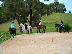 Megan Jones Riding School and Trail Rides - Accommodation Burleigh