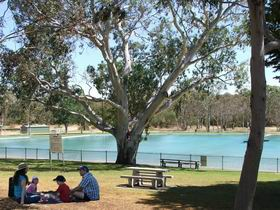Naracoorte Nature Park and Swimming Lake - Accommodation Burleigh