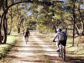 Bike About Mountain Bike Tours And Hire - Accommodation Burleigh
