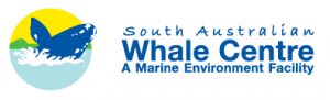 South Australian Whale Centre - Accommodation Burleigh