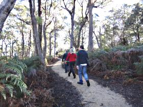 Bridport Walking Track - Accommodation Burleigh