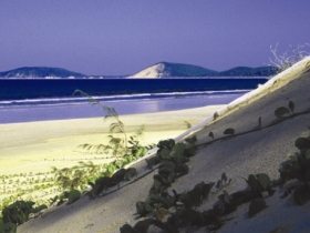 Cooloola Great Sandy National Park - Accommodation Burleigh