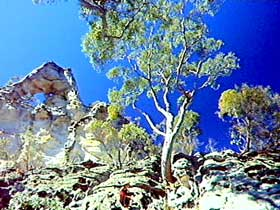 Mount Moffatt Section - Carnarvon National Park - Accommodation Burleigh