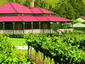 OReillys Canungra Valley Vineyards - Accommodation Burleigh