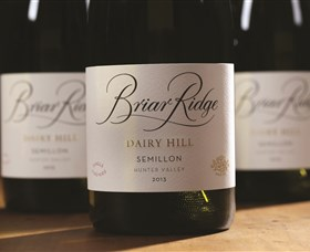 Briar Ridge Vineyard - Accommodation Burleigh
