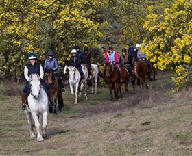 Burnelee Excursions on Horseback - Accommodation Burleigh