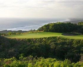 Platinum Pro Golf Tours - Accommodation Burleigh