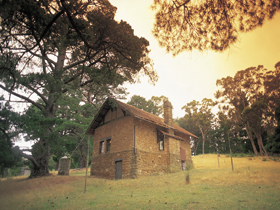 Heysen - The Cedars - Accommodation Burleigh