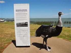 Birdman of the Coorong - Accommodation Burleigh