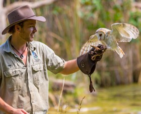 Territory Wildlife Park - Accommodation Burleigh
