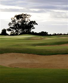 Black Bull Golf Club - Accommodation Burleigh