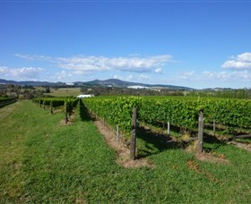 Hedberg Hill Wines - Accommodation Burleigh