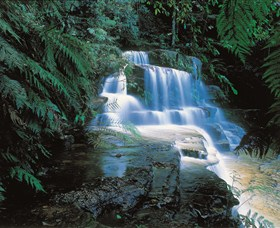 Leura Cascades - Accommodation Burleigh