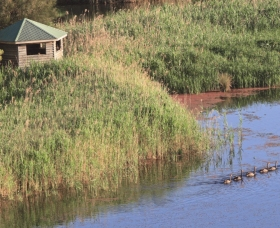Spring Creek Bird Hide - Accommodation Burleigh