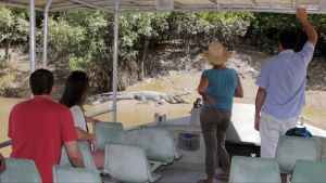 Whitsunday Crocodile Safari - Accommodation Burleigh