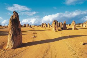 Pinnacles Desert Koalas and Sandboarding 4WD Day Tour from Perth - Accommodation Burleigh