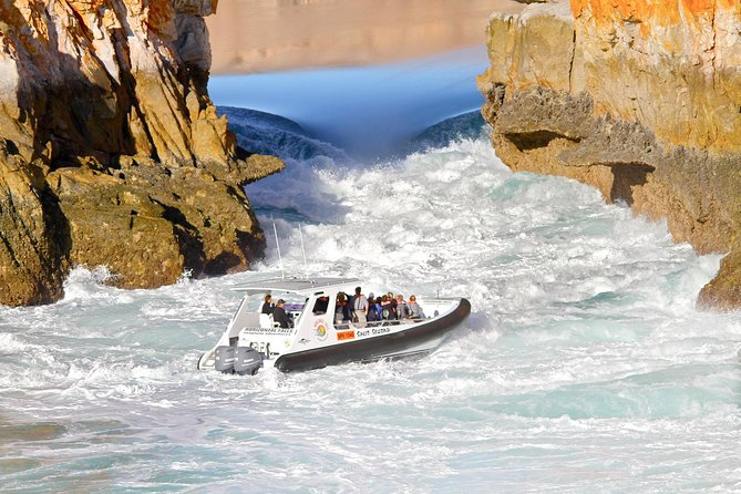 Horizontal Falls Half-Day Tour from Broome - Accommodation Burleigh