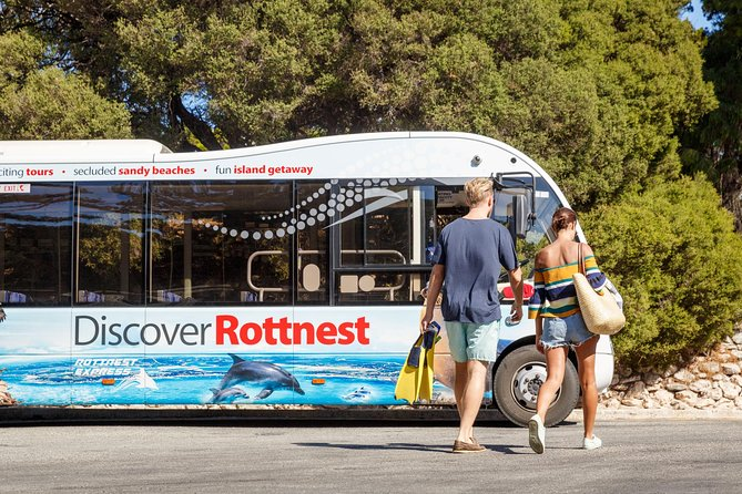 Rottnest Island Tour from Perth or Fremantle - Accommodation Burleigh