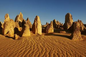 Pinnacles Day Trip from Perth Including Yanchep National Park - Accommodation Burleigh