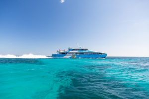 Fremantle to Rottnest Island Roundtrip Ferry Ticket - Accommodation Burleigh