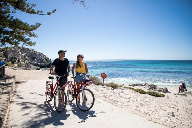 Rottnest Island with Bike Hire from Perth or Fremantle - Accommodation Burleigh