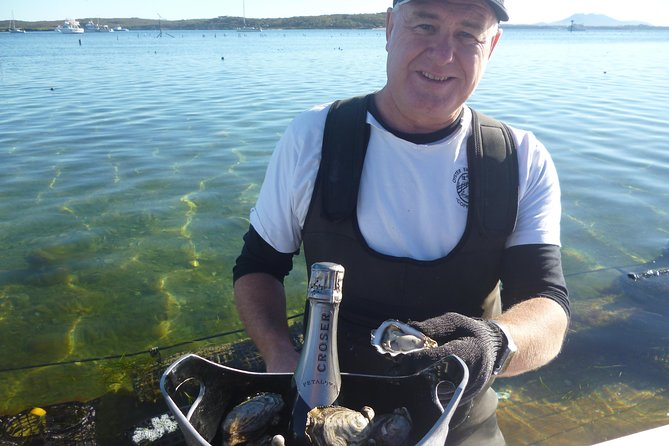 Coffin Bay Oyster Farm  Tasting Tour - Accommodation Burleigh
