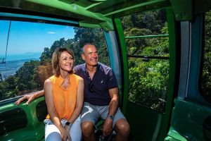 Skyrail Rainforest Cableway Day Trip from Palm Cove - Accommodation Burleigh