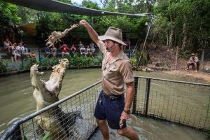 Hartley's Crocodile Adventures Day Trip from Cairns - Accommodation Burleigh