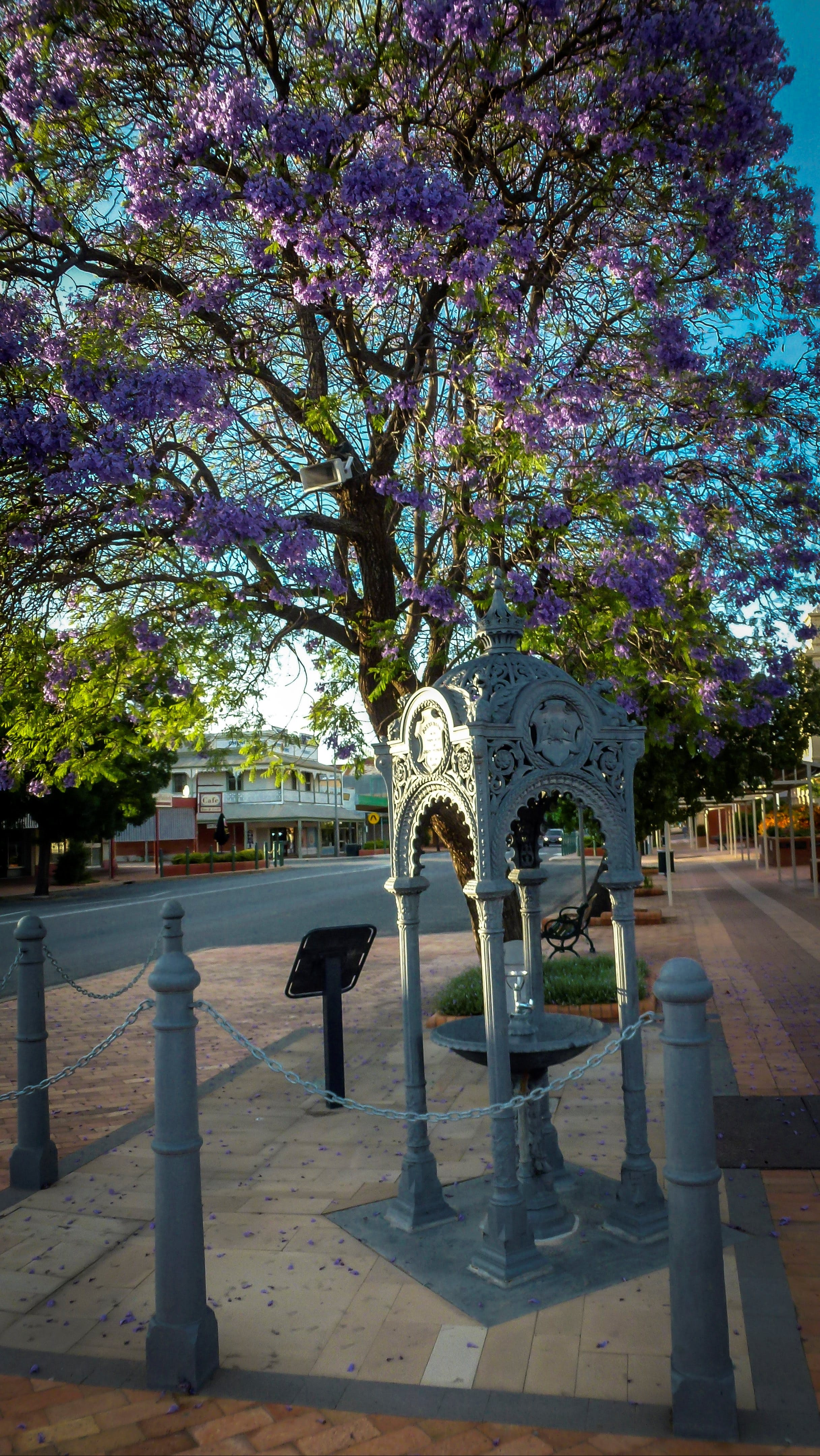 Witcombe Fountain - Accommodation Burleigh