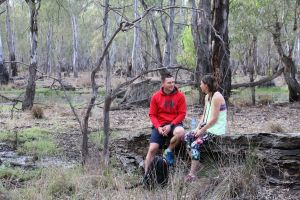 Gunbower Island Forest Drive - Accommodation Burleigh