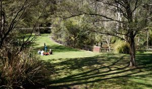 Leura Cascades picnic area - Accommodation Burleigh