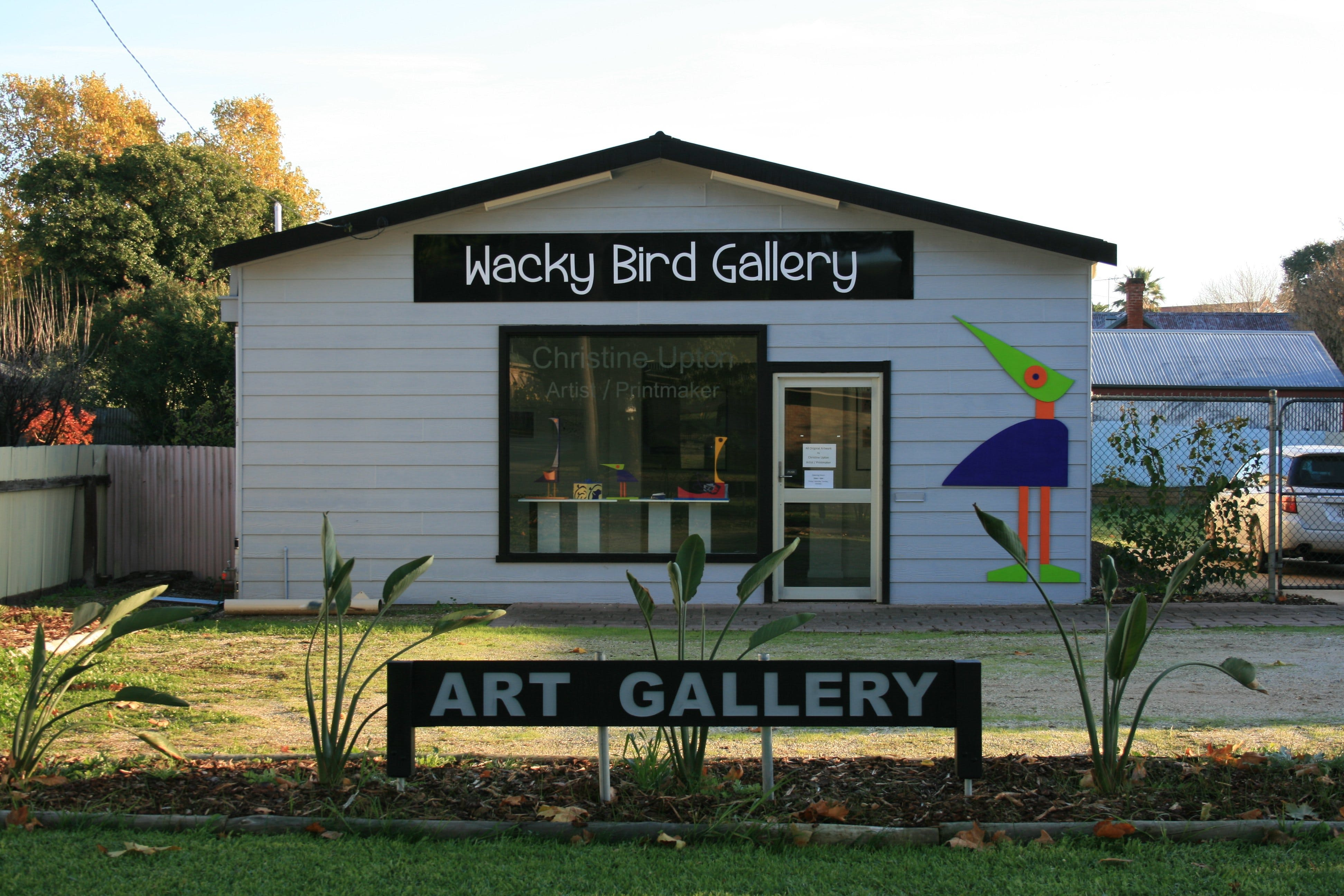 Wacky Bird Gallery - Accommodation Burleigh